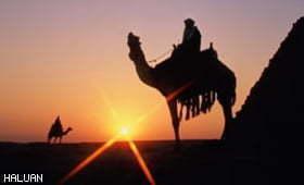 Islam Kembali Dagang
