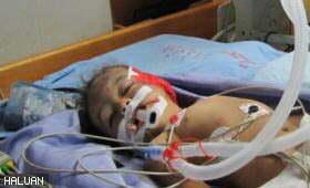 Keganasan Zionis Membunuh 19 Warga Gaza (Foto Siri 1)