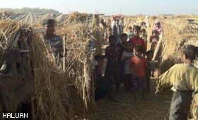 Pelarian Rohingya Hanya Mampu Berteduh Dalam Khemah Jerami