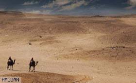 Menguruskan Pengorbanan Atas Landasan Islam dan Iman