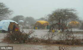 Hujan dan Banjir di Sempadan Kenya-Somalia!
